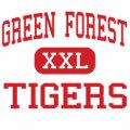 Green Forest - Tigers - High - Green Forest Canvas Bag