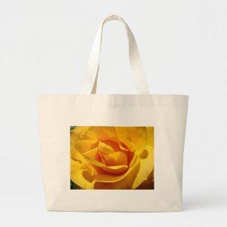 ROSES Orange Rose Flowers 1 Cards Gifts Mugs Bags