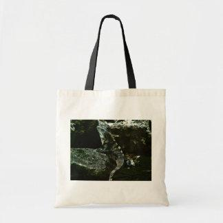 Spinytail Iguana Tote Bags