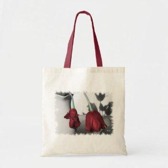 The Beauty Of Gravity Canvas Bag